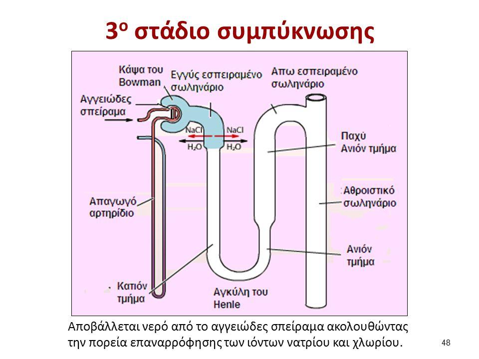 4ο στάδιο συμπύκνωσης
