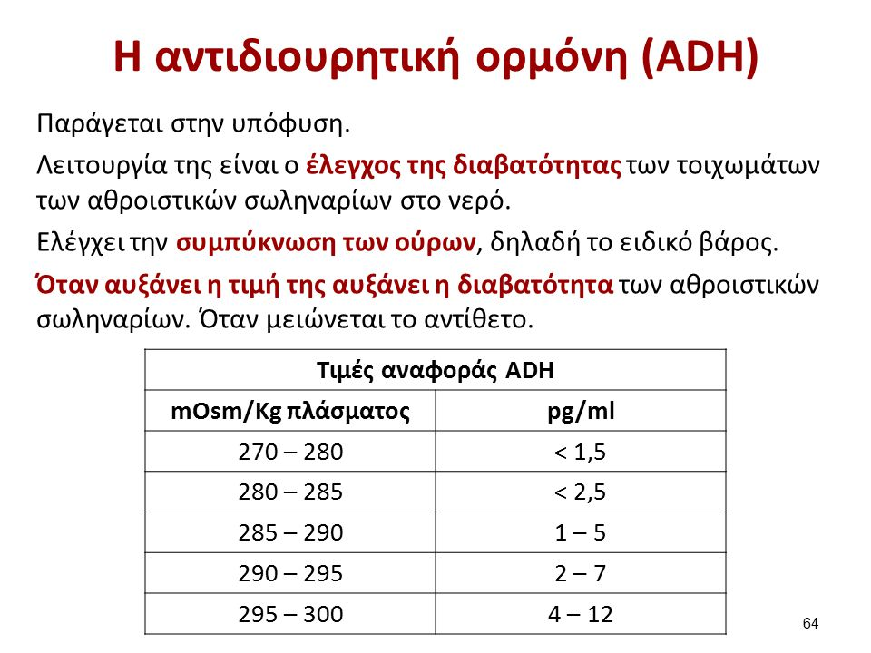 H δράση της ADH στο αθροιστικό σωληνάριο