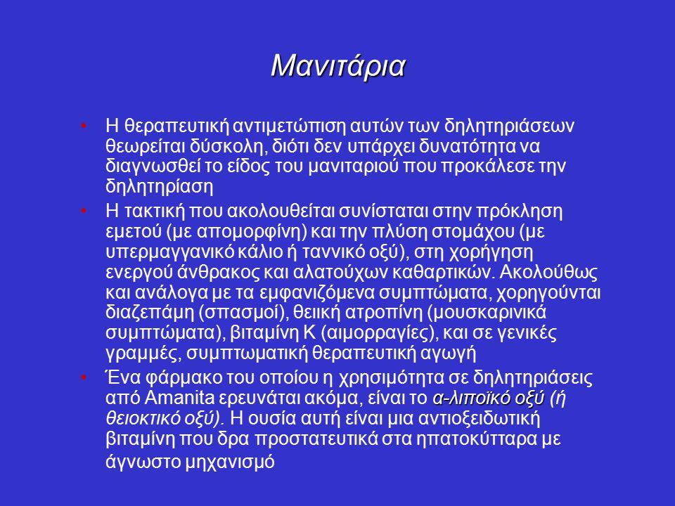 Μανιτάρια