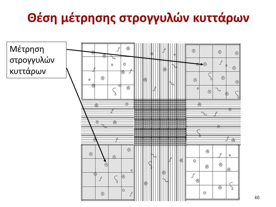 Εικόνα χρώσης υπεροξειδάσης - ορθοτολουιδίνης