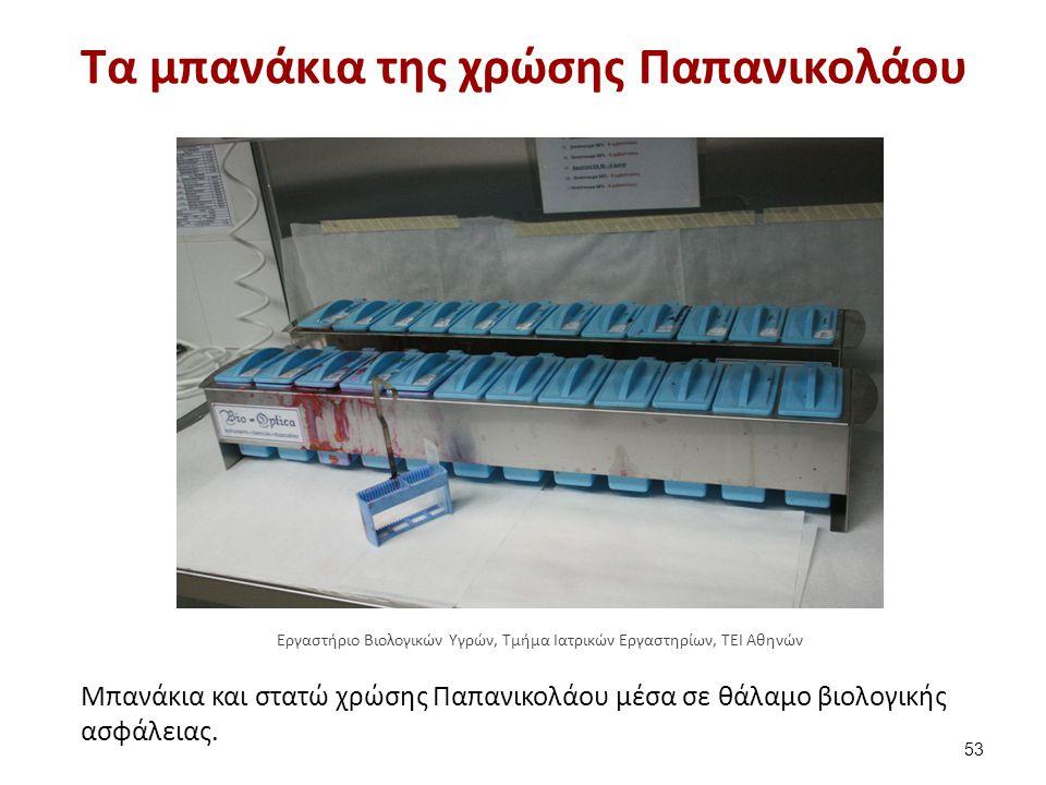 Εργαλεία προσδιορισμού μορφολογίας των σπερματοζωαρίων