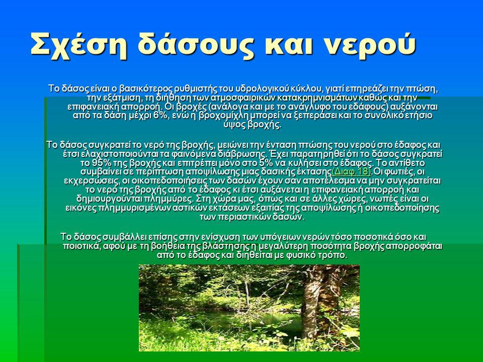 Σχέση δάσους και νερού