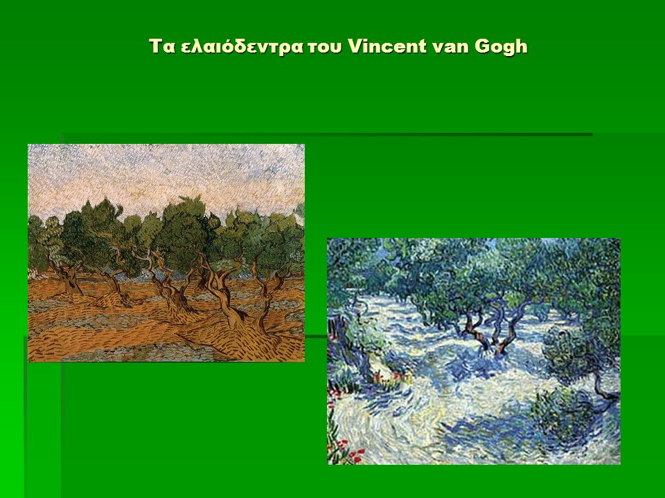 Τα ελαιόδεντρα του Vincent van Gogh
