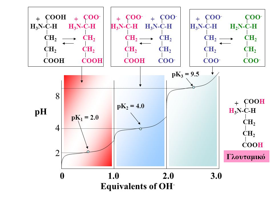 2 4 8 pH 1.0 2.0 3.0 Equivalents of OH- Γλουταμικό -H COOH C CH2 H3N-