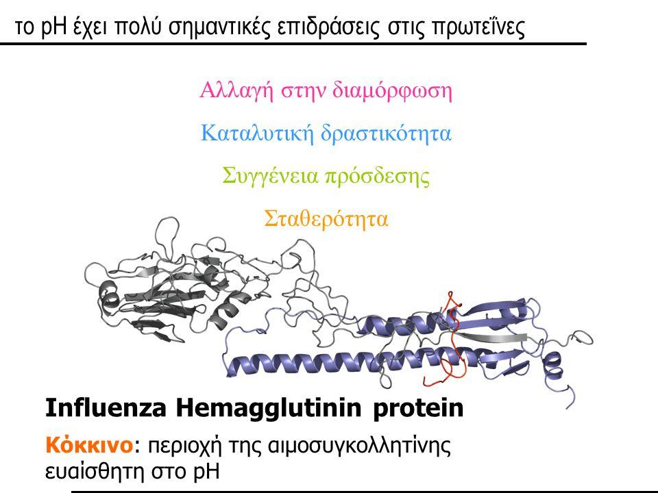το pH έχει πολύ σημαντικές επιδράσεις στις πρωτεΐνες
