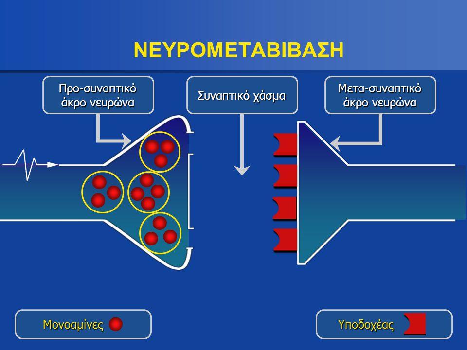 ΝΕΥΡΟΜΕΤΑΒΙΒΑΣΗ Προ-συναπτικό άκρο νευρώνα Συναπτικό χάσμα