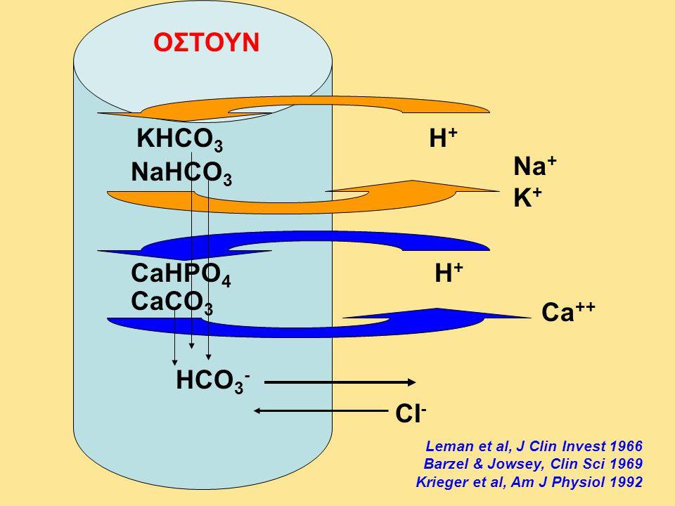ΟΣΤΟΥΝ KHCO3 H+ Na+ K+ NaHCO3 CaHPO4 H+ CaCO3 Ca++ HCO3- CI-