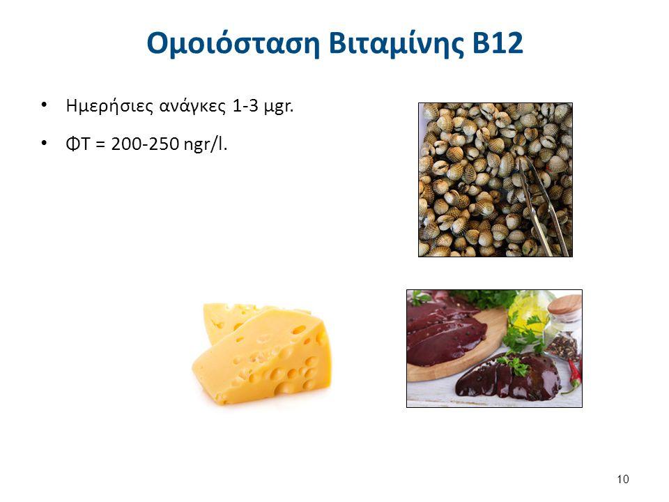 Απορρόφηση Βιταμίνης B12