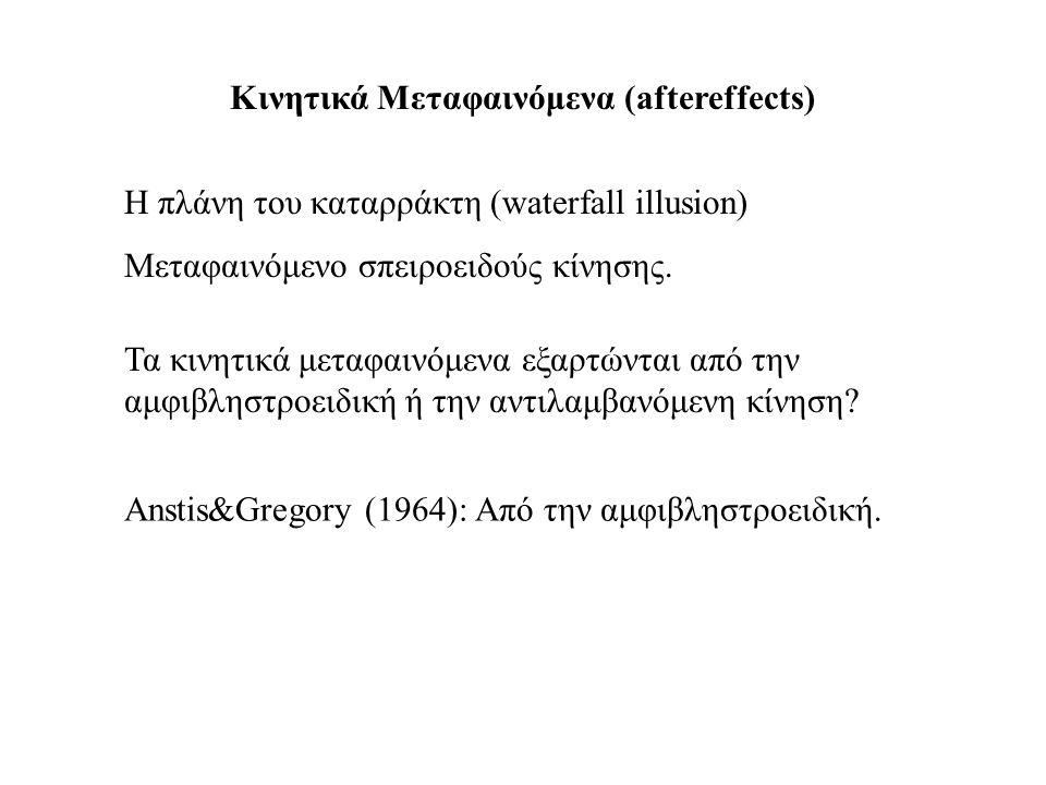 Κινητικά Μεταφαινόμενα (aftereffects)