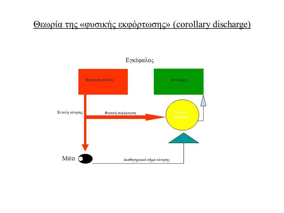 Θεωρία της «φυσικής εκφόρτωσης» (corollary discharge)