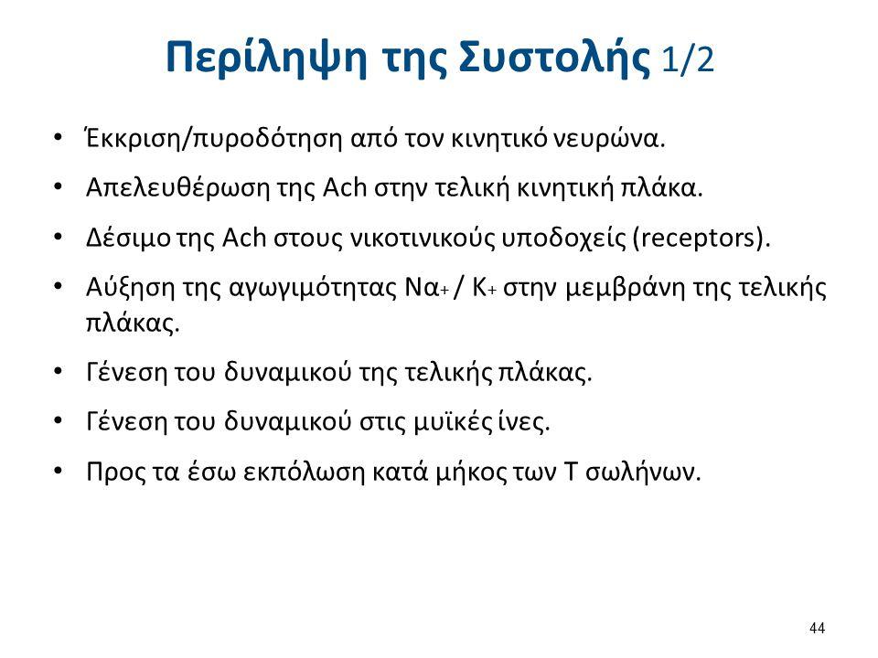 Περίληψη της Συστολής 2/2