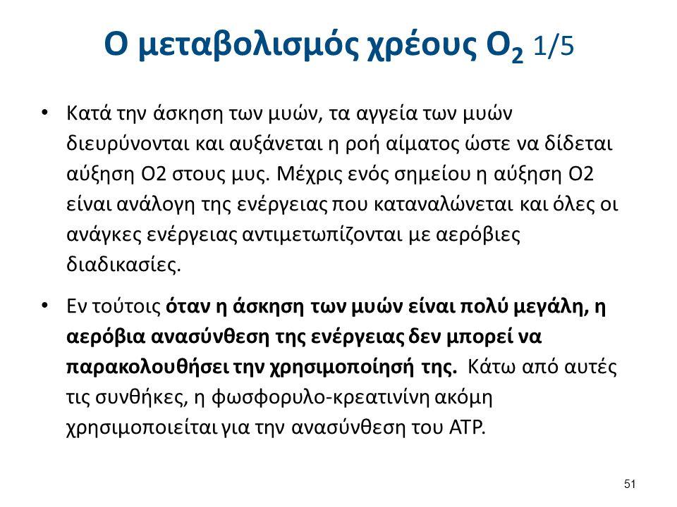 Ο μεταβολισμός χρέους Ο2 2/5