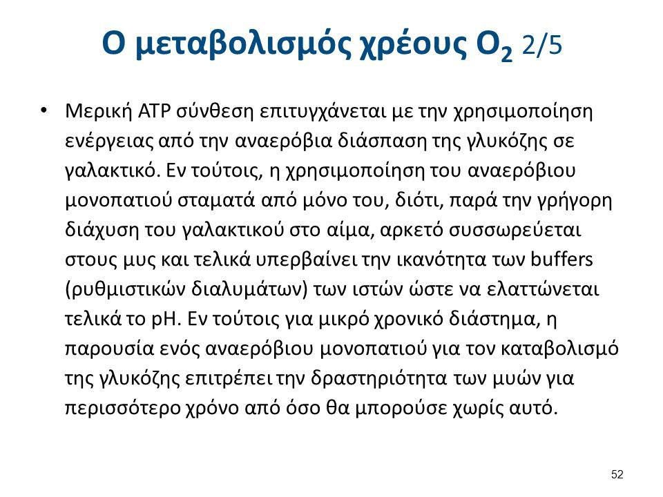 Ο μεταβολισμός χρέους Ο2 3/5