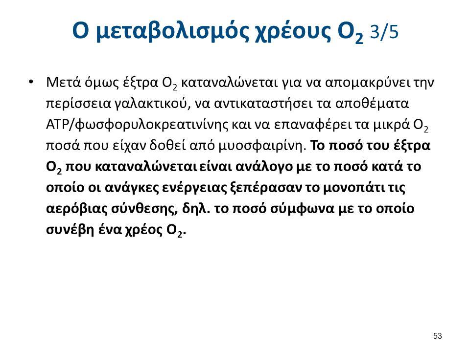 Ο μεταβολισμός χρέους Ο2 4/5