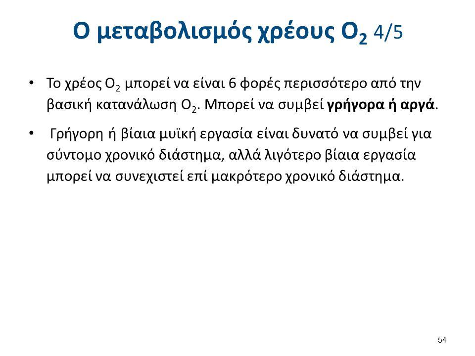 Ο μεταβολισμός χρέους Ο2 5/5