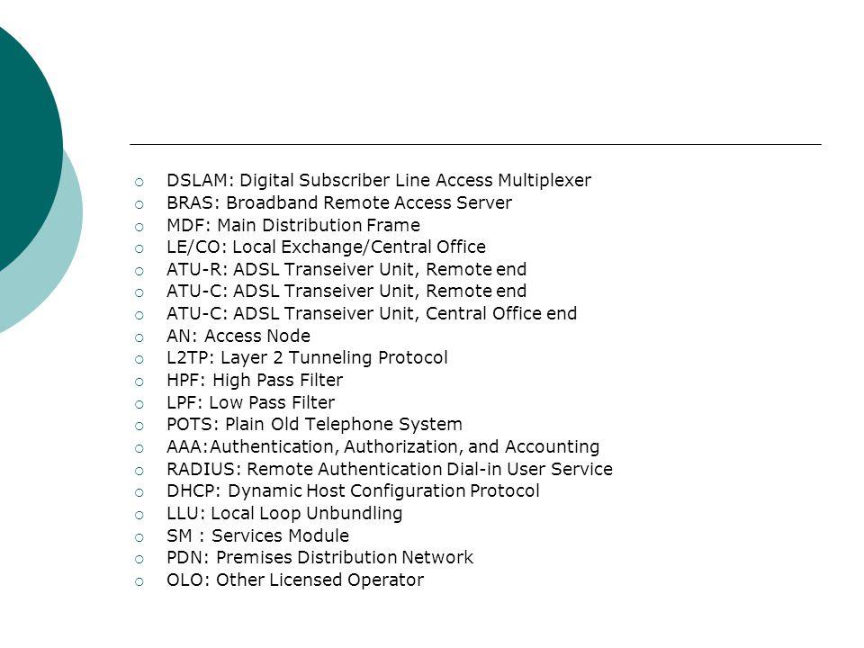 DSLAM: Digital Subscriber Line Access Multiplexer