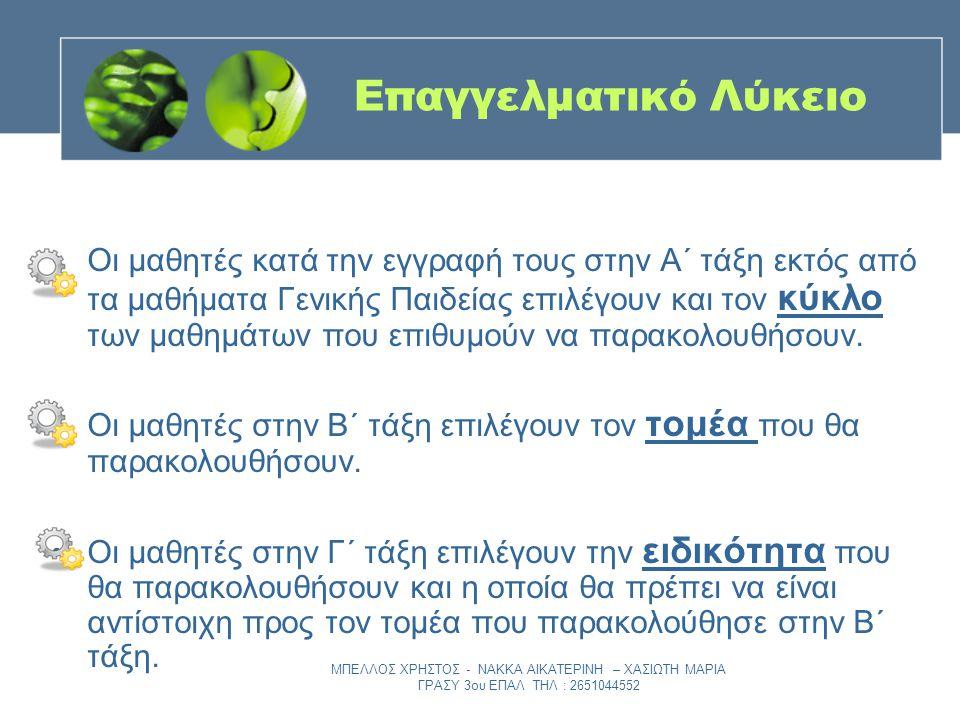 ΜΠΕΛΛΟΣ ΧΡΗΣΤΟΣ - ΝΑΚΚΑ ΑΙΚΑΤΕΡΙΝΗ – ΧΑΣΙΩΤΗ ΜΑΡΙΑ