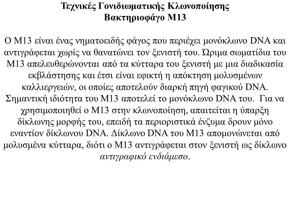 Τεχνικές Γονιδιωματικής Κλωνοποίησης