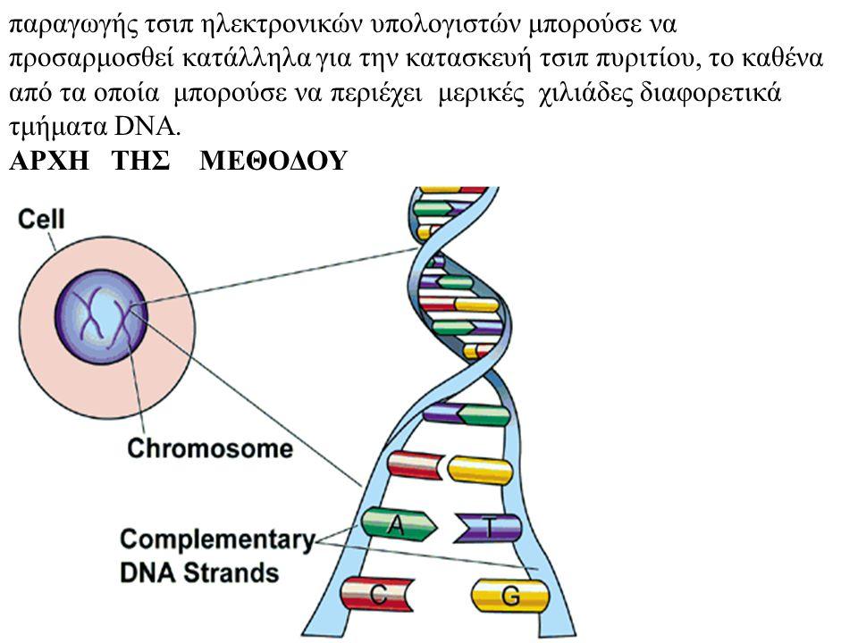 παραγωγής τσιπ ηλεκτρονικών υπολογιστών μπορούσε να προσαρμοσθεί κατάλληλα για την κατασκευή τσιπ πυριτίου, το καθένα από τα οποία μπορούσε να περιέχει μερικές χιλιάδες διαφορετικά τμήματα DNA.