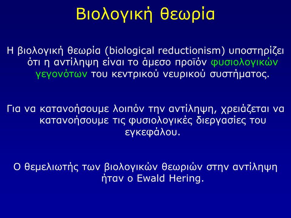 Ο θεμελιωτής των βιολογικών θεωριών στην αντίληψη ήταν ο Ewald Hering.