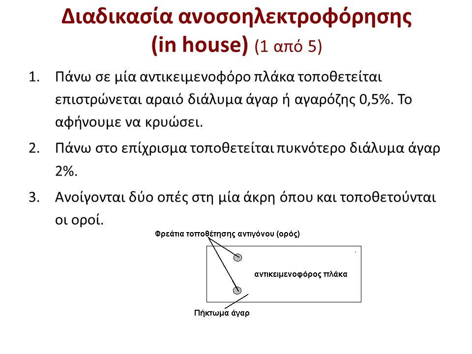 Διαδικασία ανοσοηλεκτροφόρησης (in house) (2 από 5)