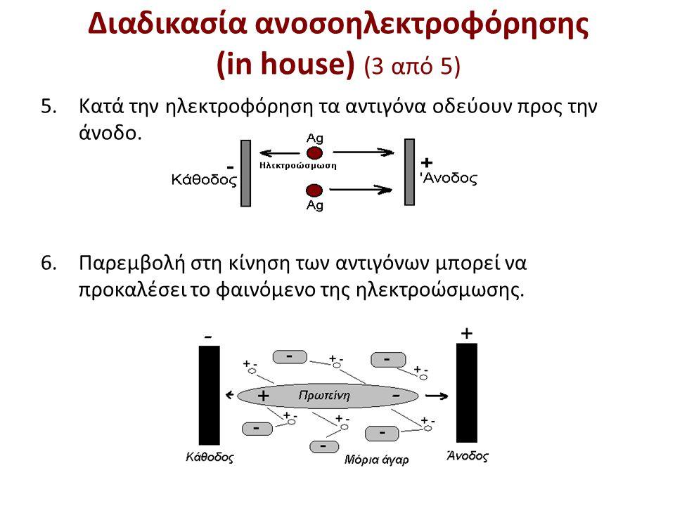 Διαδικασία ανοσοηλεκτροφόρησης (in house) (4 από 5)