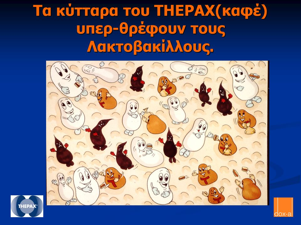 Τα κύτταρα του THEPAX(καφέ) υπερ-θρέφουν τους Λακτοβακίλλους.