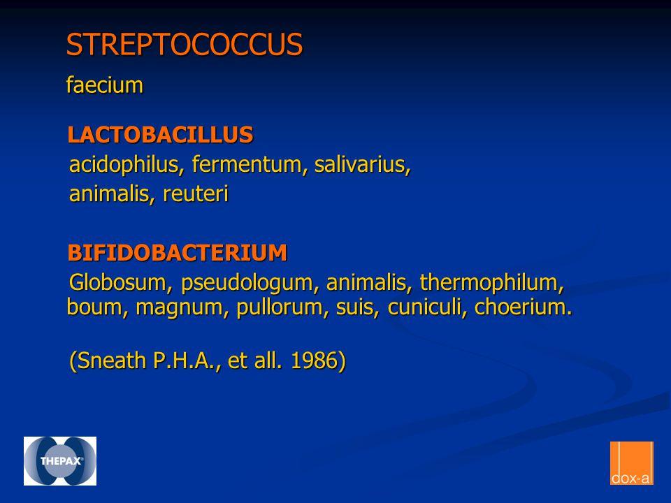 STREPTOCOCCUS faecium