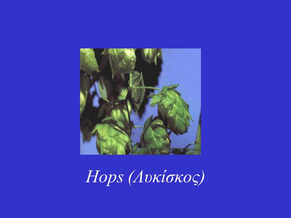 Hops (Λυκίσκος)
