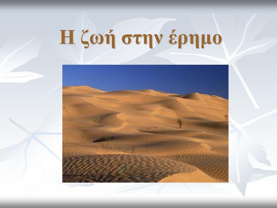 Η ζωή στην έρημο