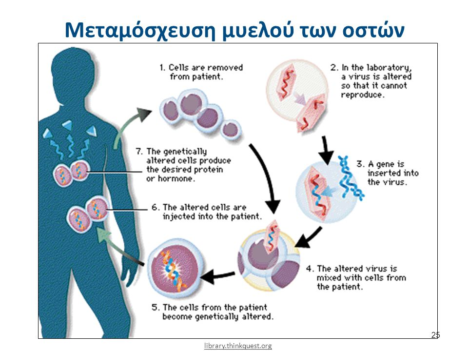 Μεσογειακή αναιμία και κύηση
