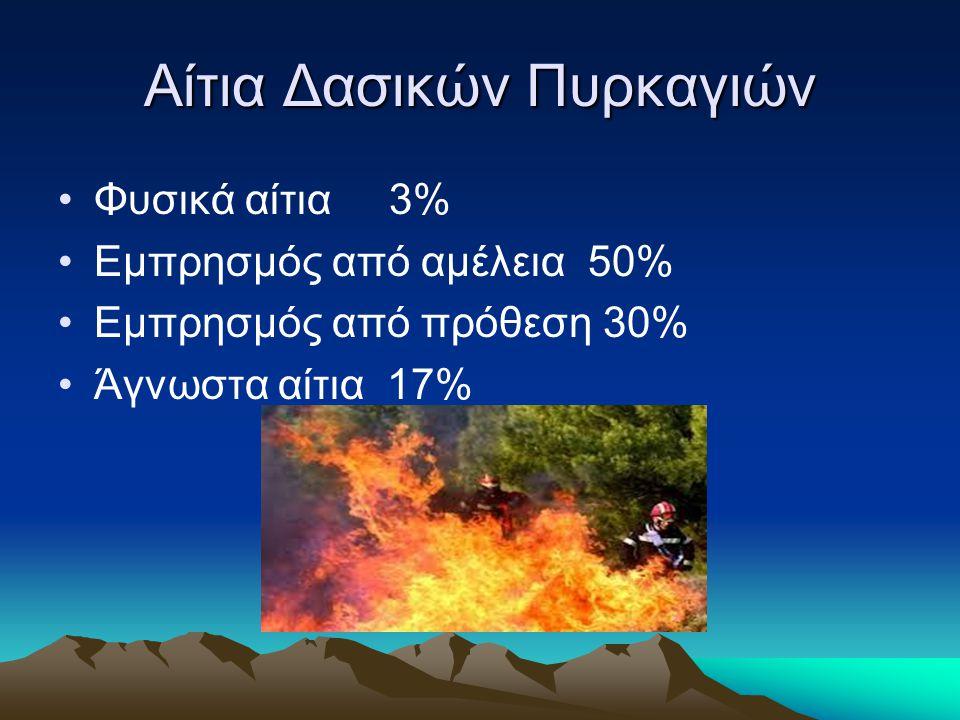 Αίτια Δασικών Πυρκαγιών