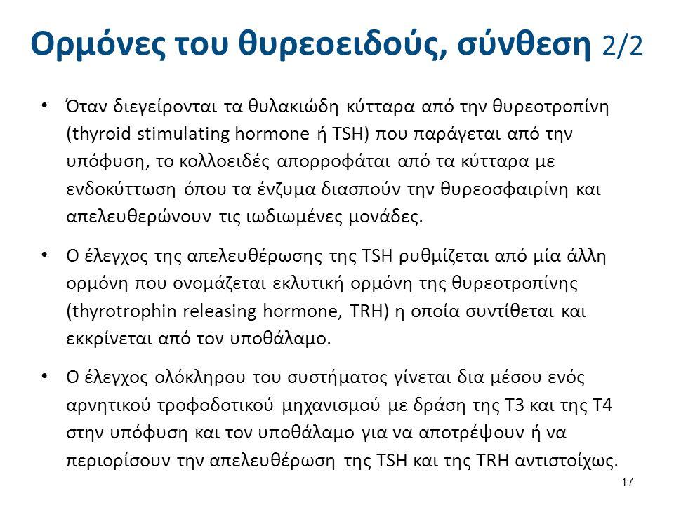 Ορμόνες του θυρεοειδούς, έκκριση και δράση 1/2