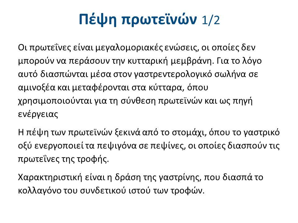 Πέψη πρωτεϊνών 2/2