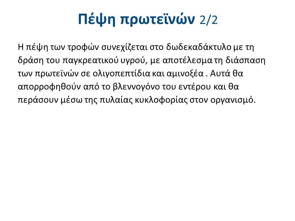 Πέψη λιπών 1/2