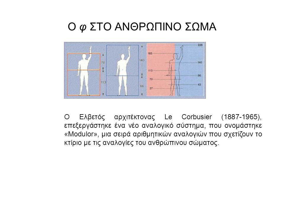 Ο φ ΣΤΟ ΑΝΘΡΩΠΙΝΟ ΣΩΜΑ