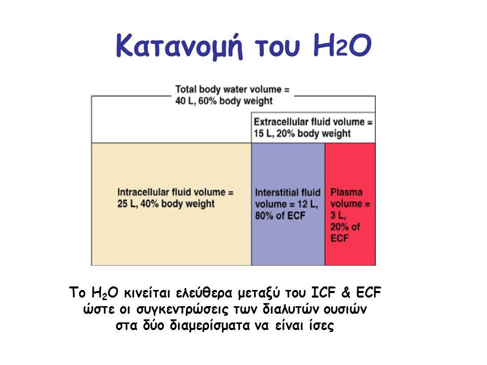 Κατανομή του H2O Το H2O κινείται ελεύθερα μεταξύ του ICF & ECF