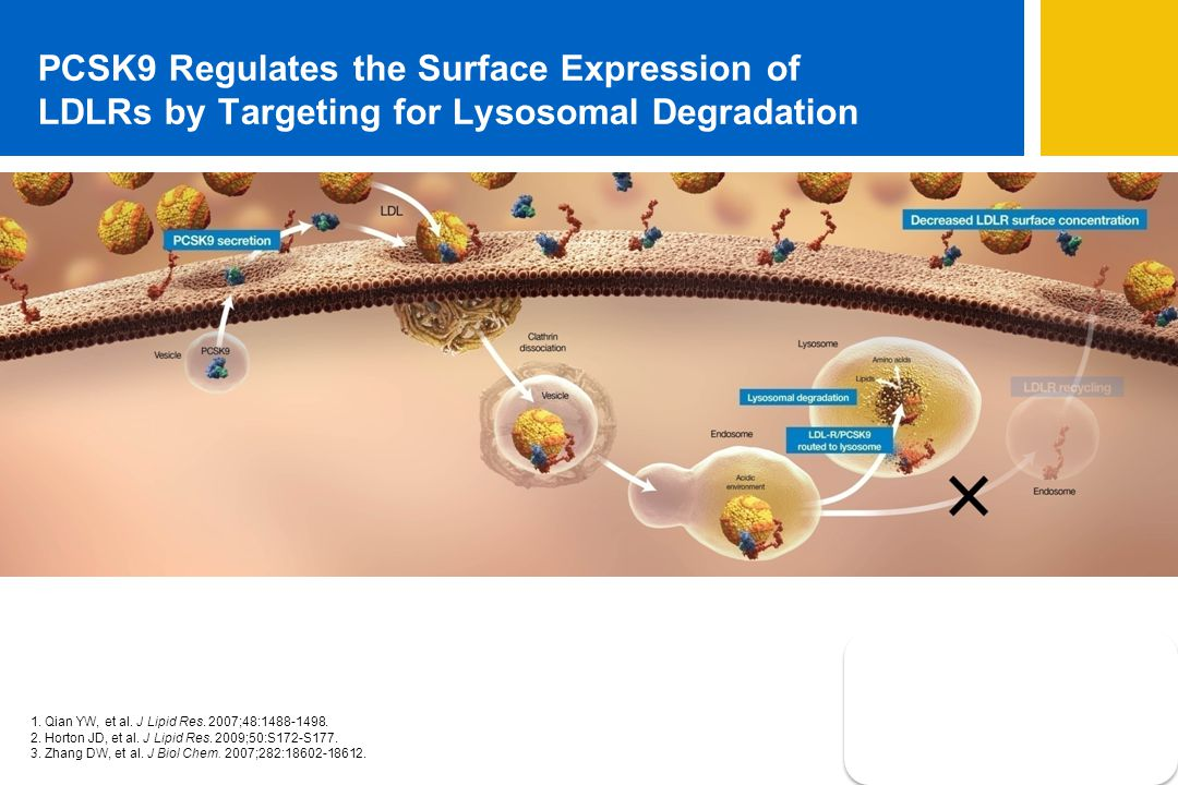PCSK9 Regulates the Surface Expression of LDLRs by Targeting for Lysosomal Degradation