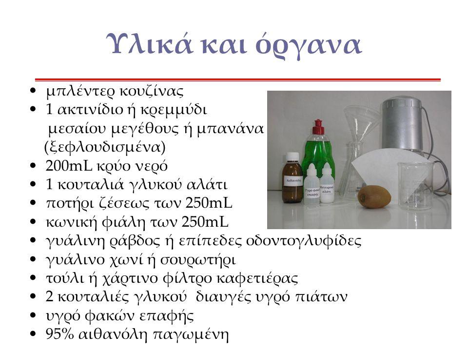 Υλικά και όργανα μπλέντερ κουζίνας 1 ακτινίδιο ή κρεμμύδι