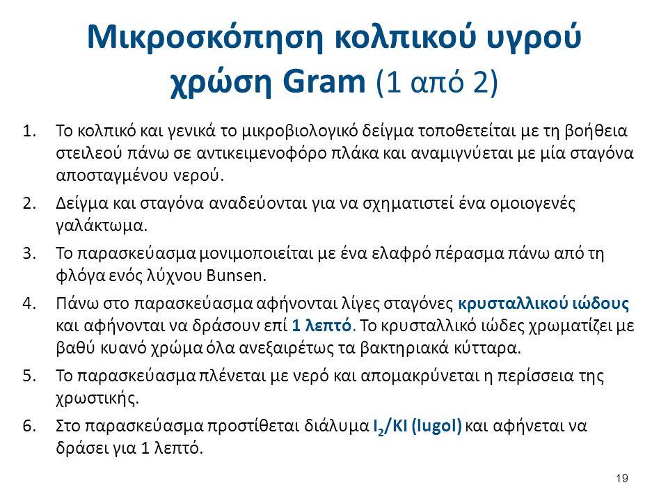 Μικροσκόπηση κολπικού υγρού χρώση Gram (2 από 2)