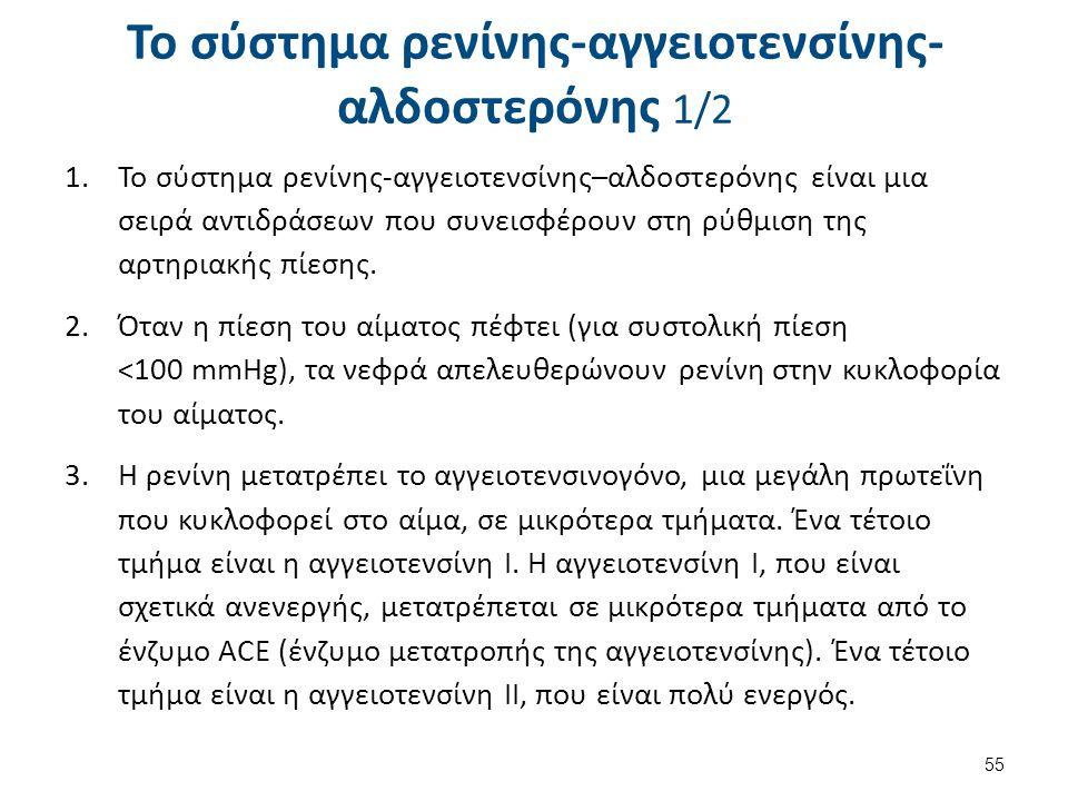 Το σύστημα ρενίνης-αγγειοτενσίνης-αλδοστερόνης 2/2
