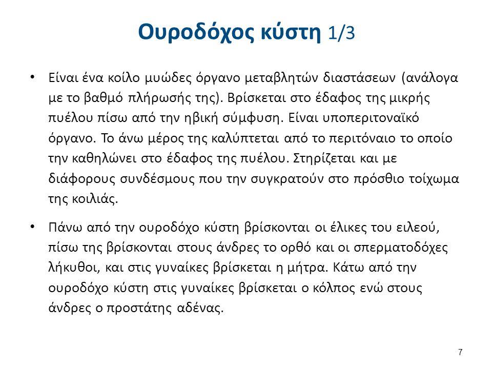 Ουροδόχος κύστη 2/3