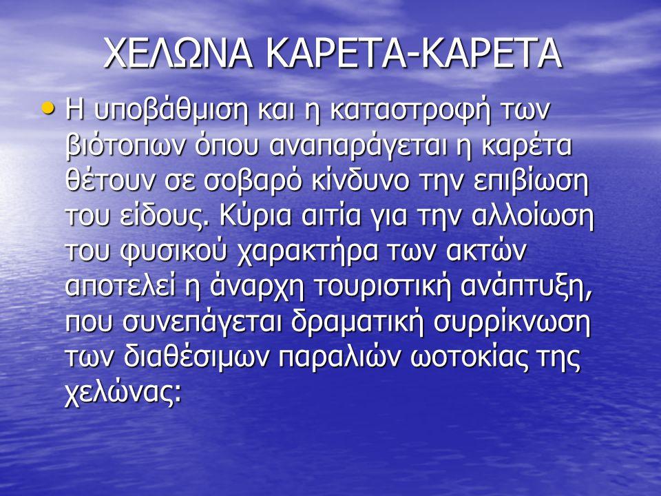 XEΛΩΝΑ ΚΑΡΕΤΑ-ΚΑΡΕΤΑ