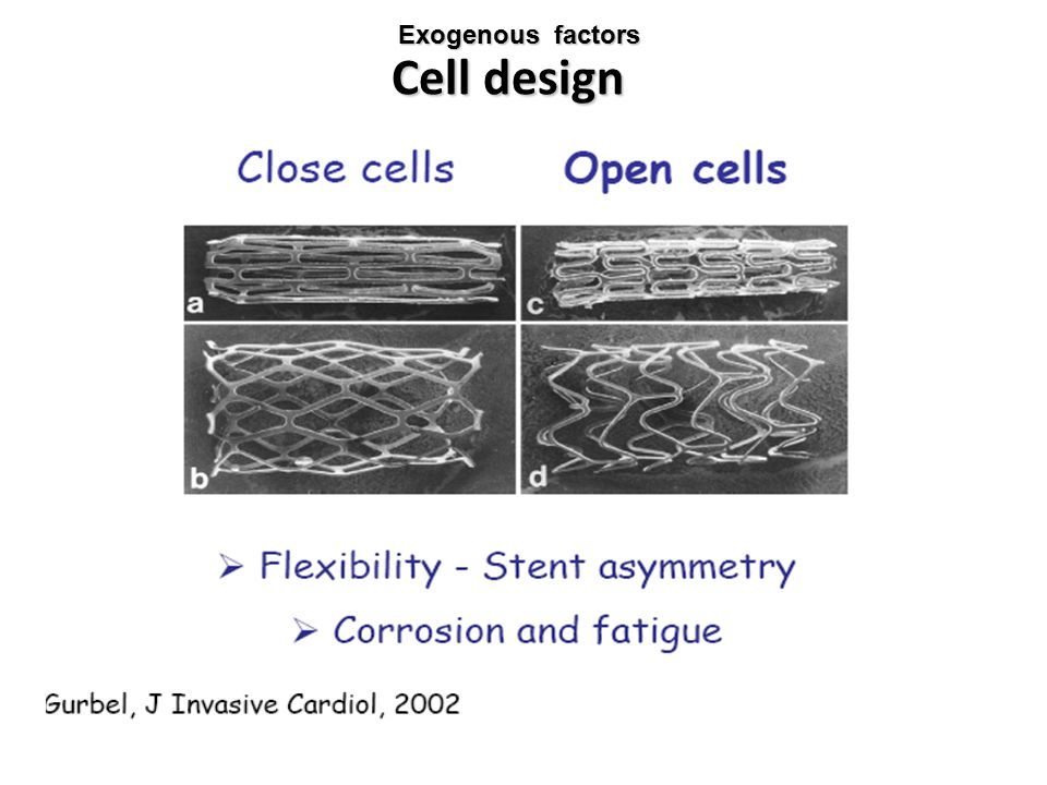 Cell design Exogenous factors