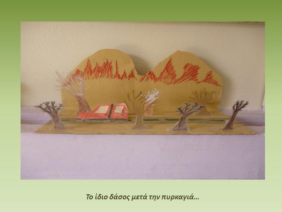 Το ίδιο δάσος μετά την πυρκαγιά…
