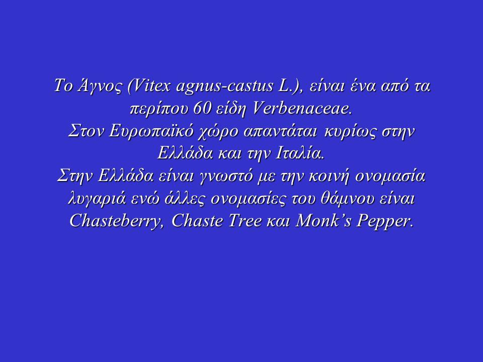Το Άγνος (Vitex agnus-castus L