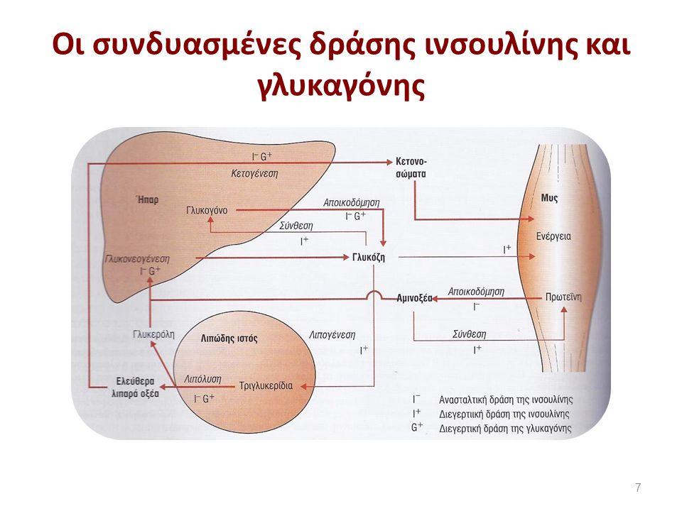 Η ορμόνη ινσουλίνη (1 από 3)