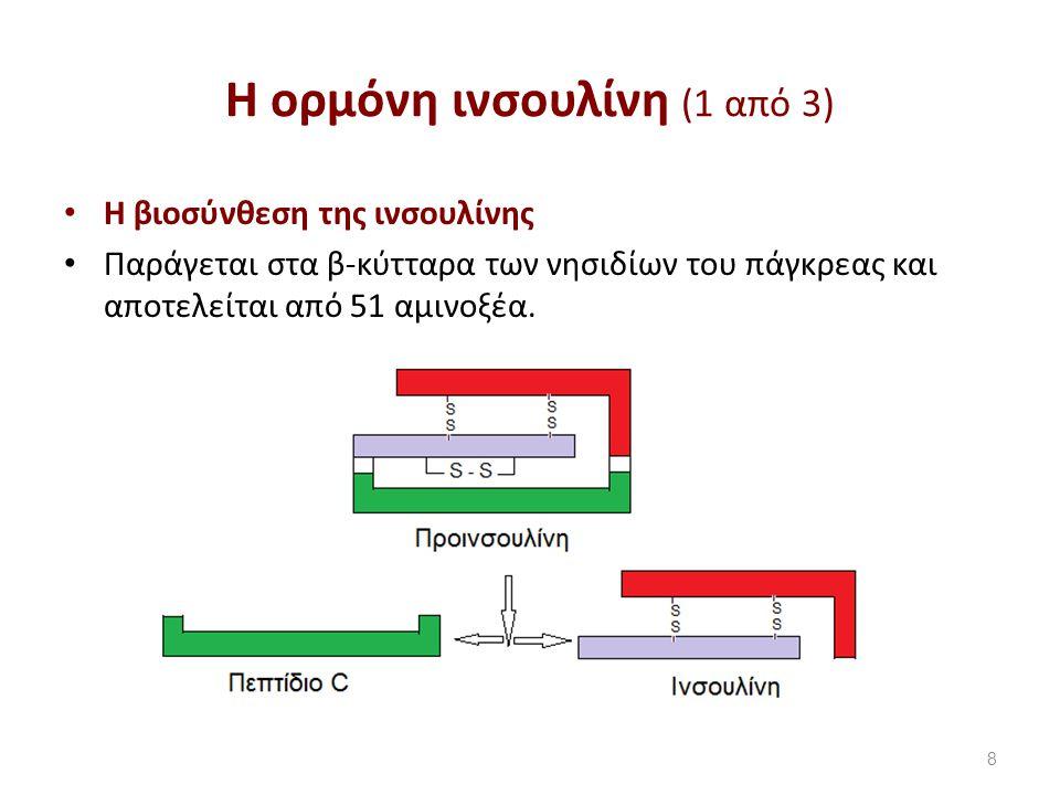 Η ορμόνη ινσουλίνη (2 από 3)