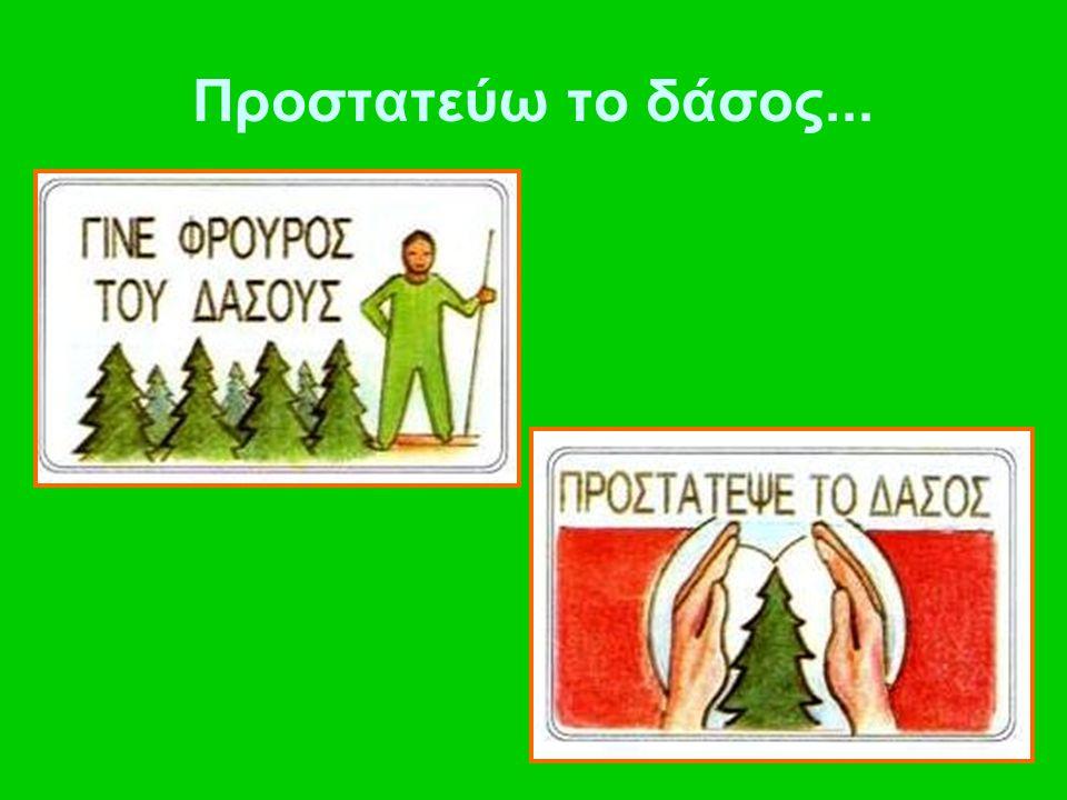 Προστατεύω το δάσος...
