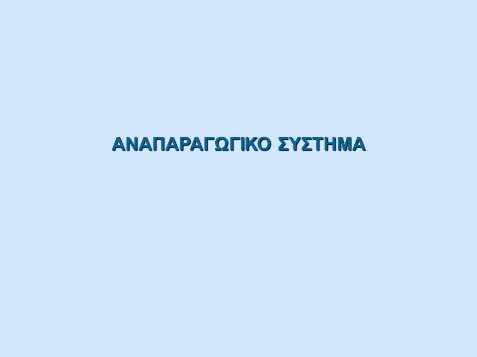 ΑΝΑΠΑΡΑΓΩΓΙΚΟ ΣΥΣΤΗΜΑ